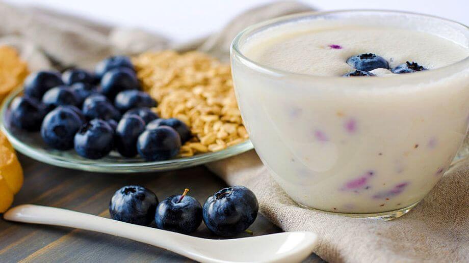 Kefir vs Yogur, Diferencias