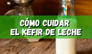 Como cuidar kéfir de leche