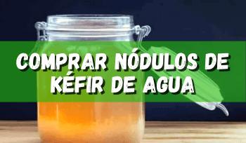 Comprar nódulos de kéfir de agua